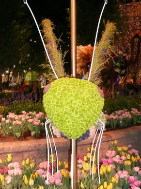 Bug Head