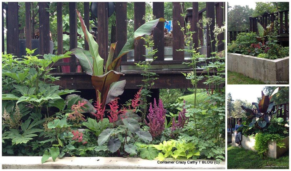 Container Garden Services (2/6)