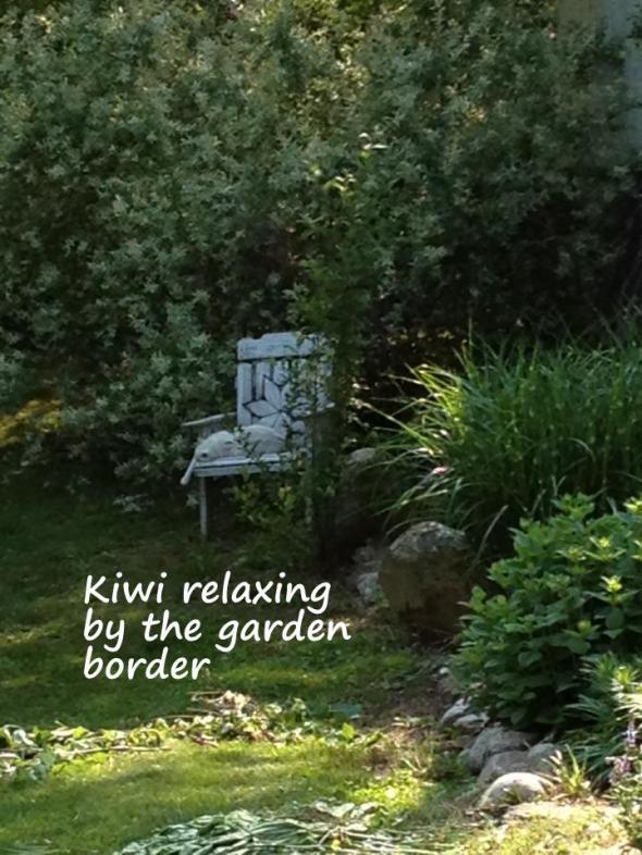 Kiwi defines relaxation