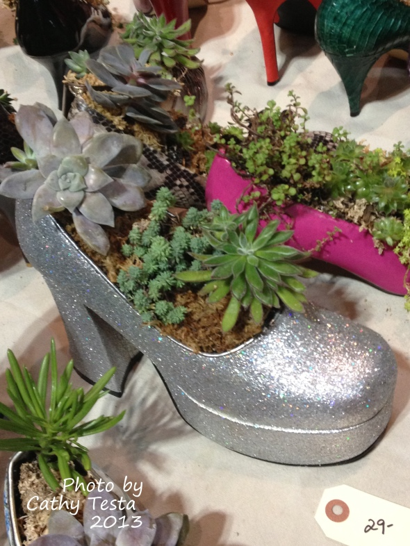 Silver Shoes with Succulents