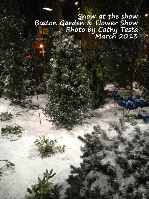 Snow covered display