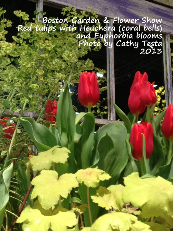 Red Tulips with Euphorbia and Heuchera