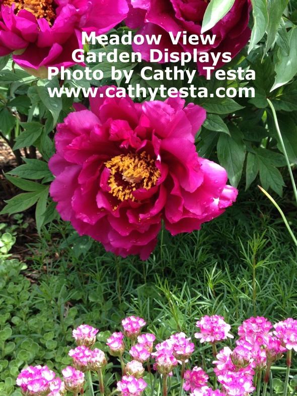 Garden displays