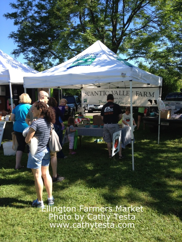 Scantic Valley Farms at the market