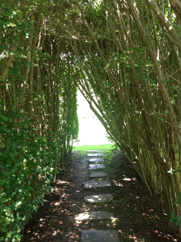 Hedge tunnel path to Secret Gardens
