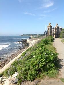 Cliff Walk View