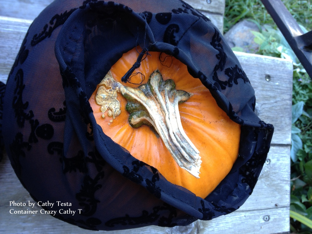 Pimping Pumpkins with Nylon and Bling-Bling (4/6)