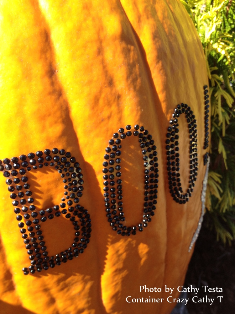 Pimping Pumpkins with Nylon and Bling-Bling (1/6)