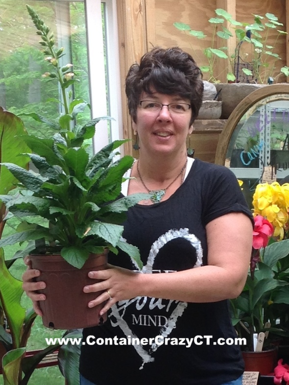 Holding a beautiful plant sold at our workshops.