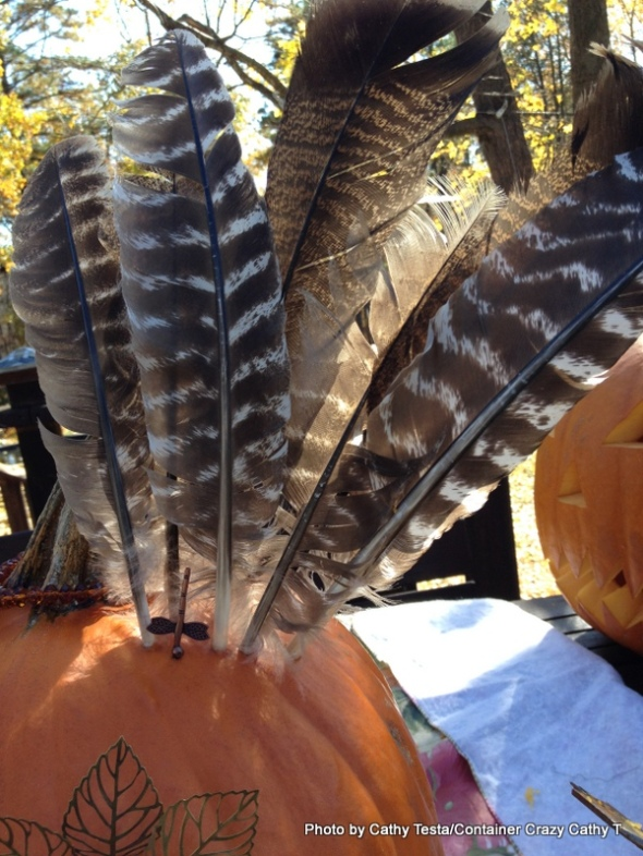 Feathers in Pumpkin