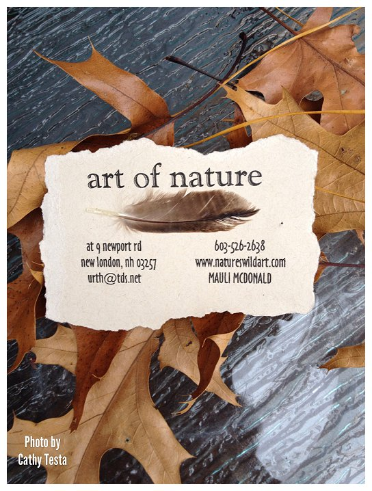 Art of Nature_0001