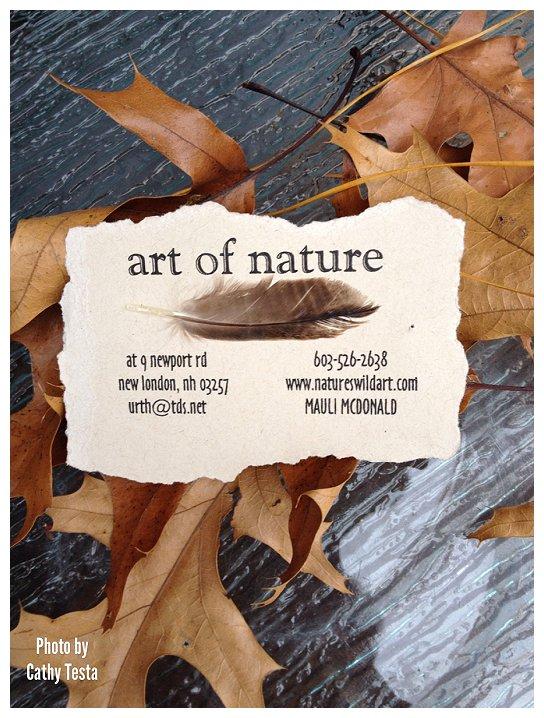 Art of Nature_0001