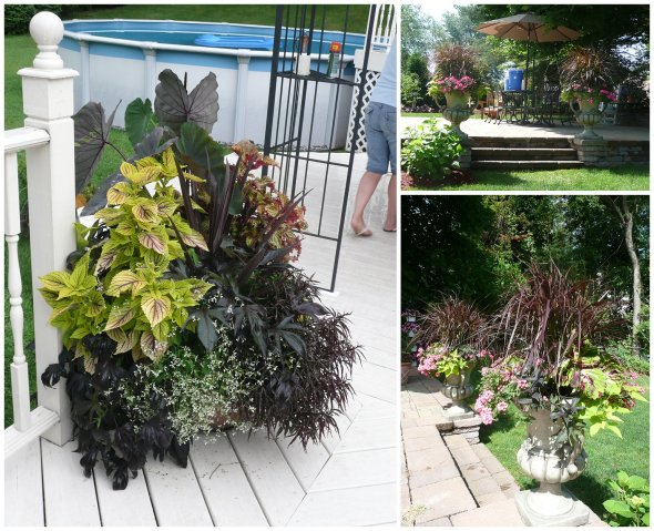 Made by Cathy T Clients at a Container Garden Party, and Containers by a Client with consultations