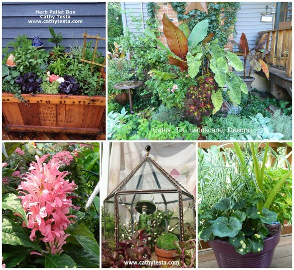 Cathy Testa Container Gardens_0009