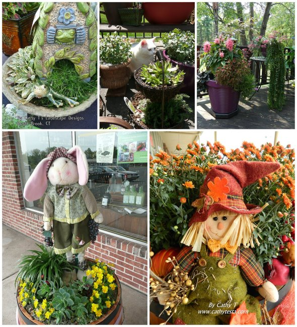 Cathy Testa Container Gardens_0010