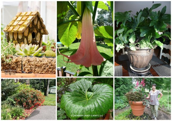 Cathy Testa Container Gardens_0013