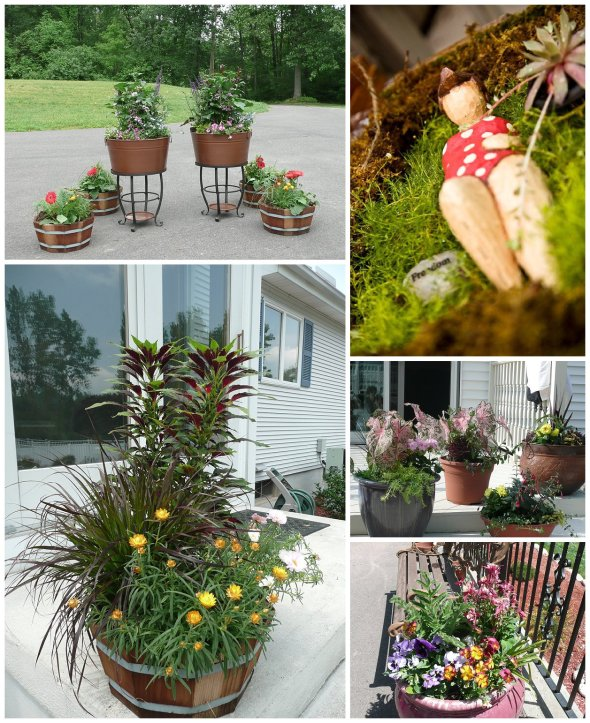 Cathy Testa Container Gardens_0020