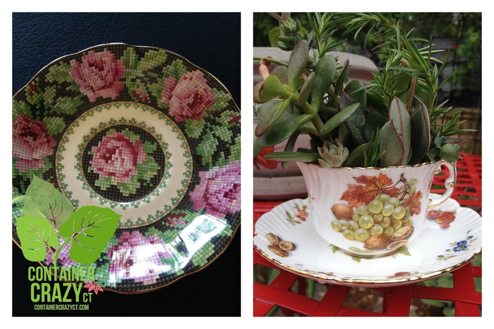 Cathy T at the Ellington Farmers Market - Edibles, Succulents, and More (3/6)