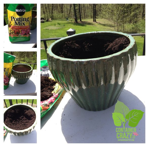 New Glazed Pot and Soil Mix