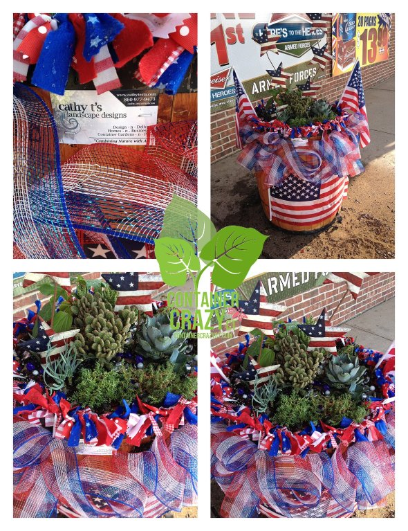 4th of July Succulents ContainerCrazyCT_0002
