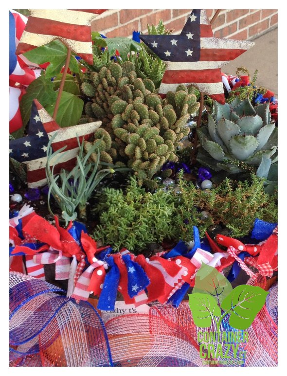 4th of July with Succulents and Decor