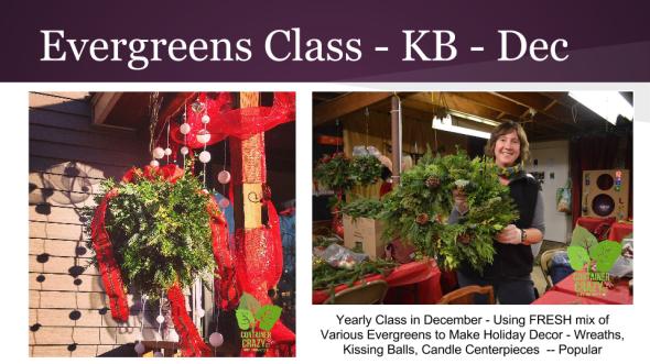 Edibles Container Gardening 2015 (9)