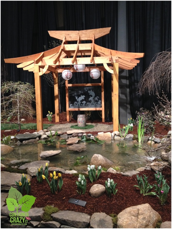 Landscape Display Aquascapes of CT