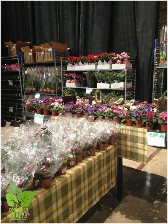 Greenhouse Growers Assoc. Area