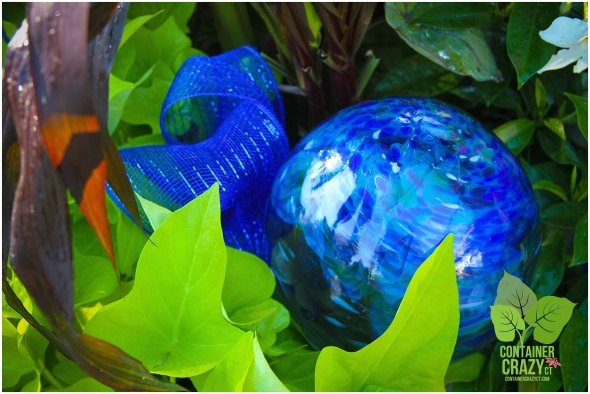Sweet Potato Vines next to cobalt blue gazing ball decor in the pot
