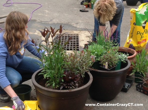 Attendees Get into the Zone - The Pot Planting Zone