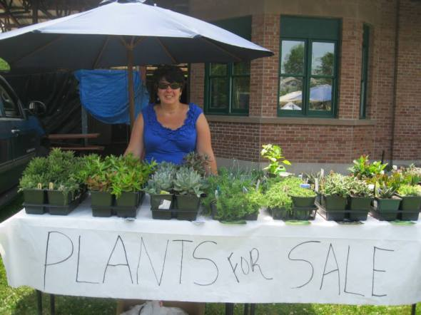 Cathy T last year at the market featured succulent plants