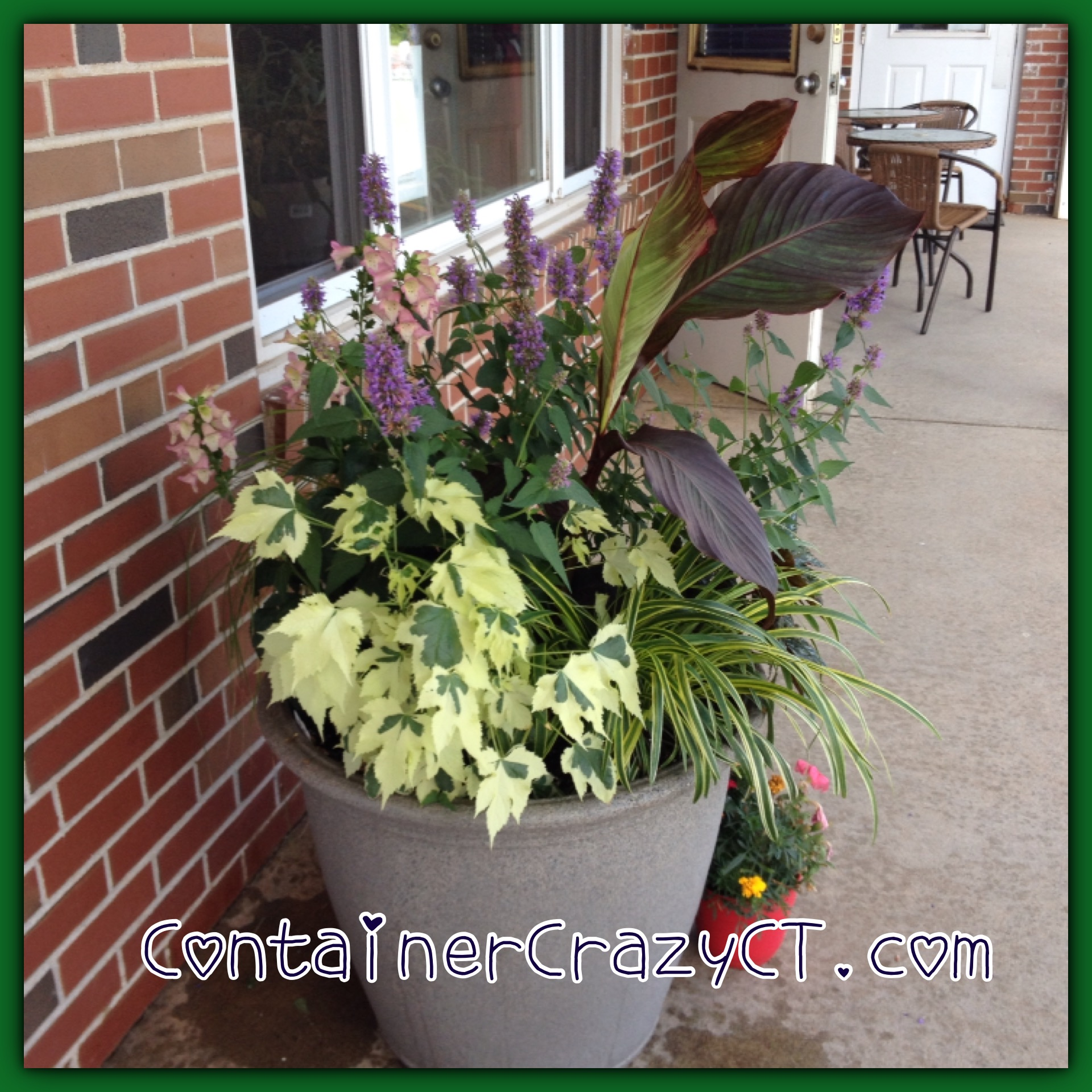 Container Garden Install at a Hairdressers Shop