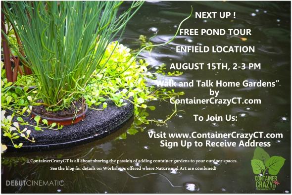 Pond Tour 2015