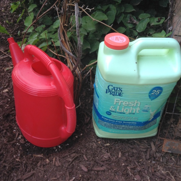 Fill watering cans or recycled jugs and set aside to have next day for watering on the fly