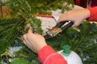 Cutting Greens