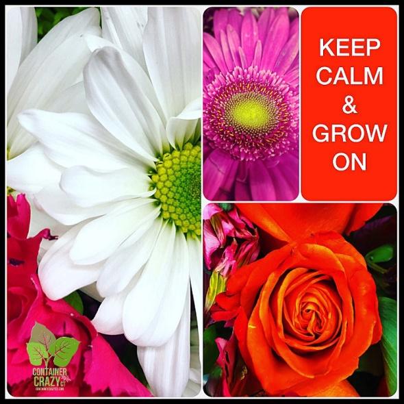 Keep Calm_0001