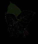 CC Logo black Wkshp