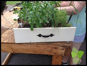 Container Garden Workshop_0002