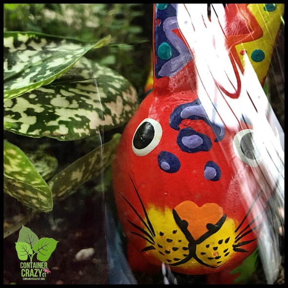 Colorful Bunny in a Terrarium