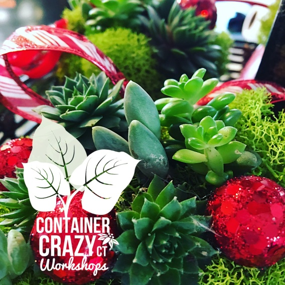containercrazyct-creations_0001