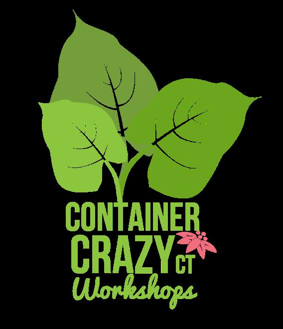 cc-logo-color-workshops