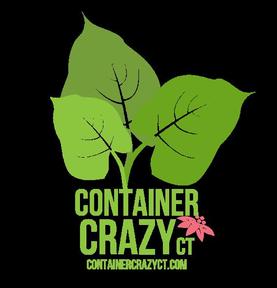 cc-logo-color