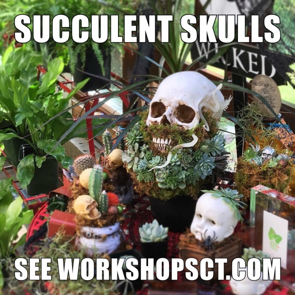 Skull with words