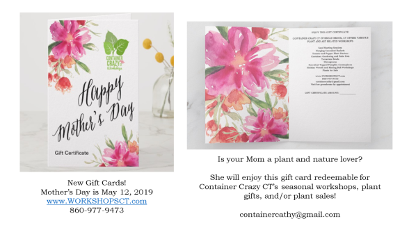 Mothers Day New 2019 Gift Certf